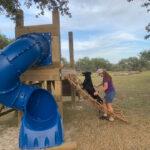 Dog using climbing rope for training